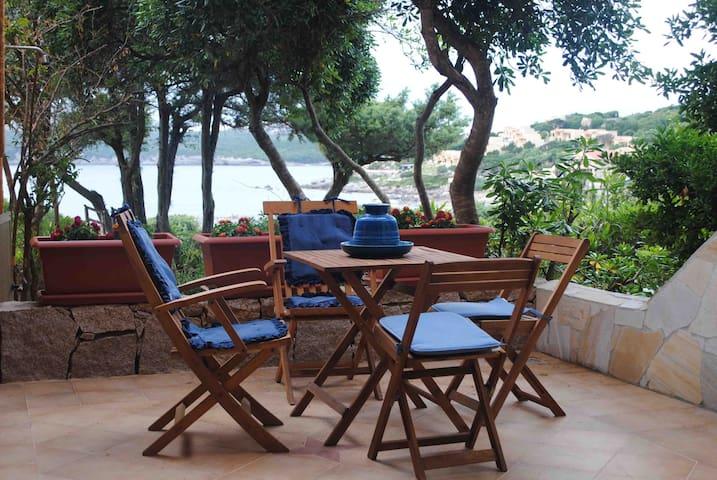 Raffinato appartamento direttamente sulla spiaggia - Santa Reparata - Appartement