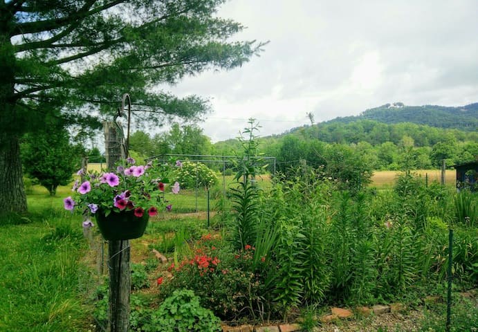 Peaceful farm near Lake Lure/Chimney Rock/Tryon