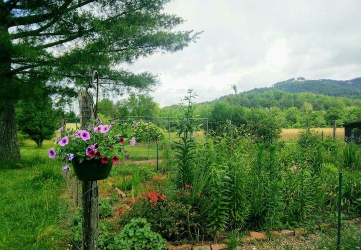 Peaceful farm near Lake Lure/Chimney Rock/Tryon
