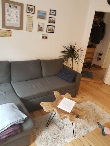 Cosy apartment in the middle of Copenhagen.