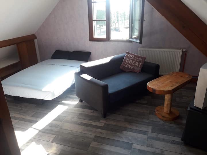 Chambre spacieuse, avec salon et coin sanitaire