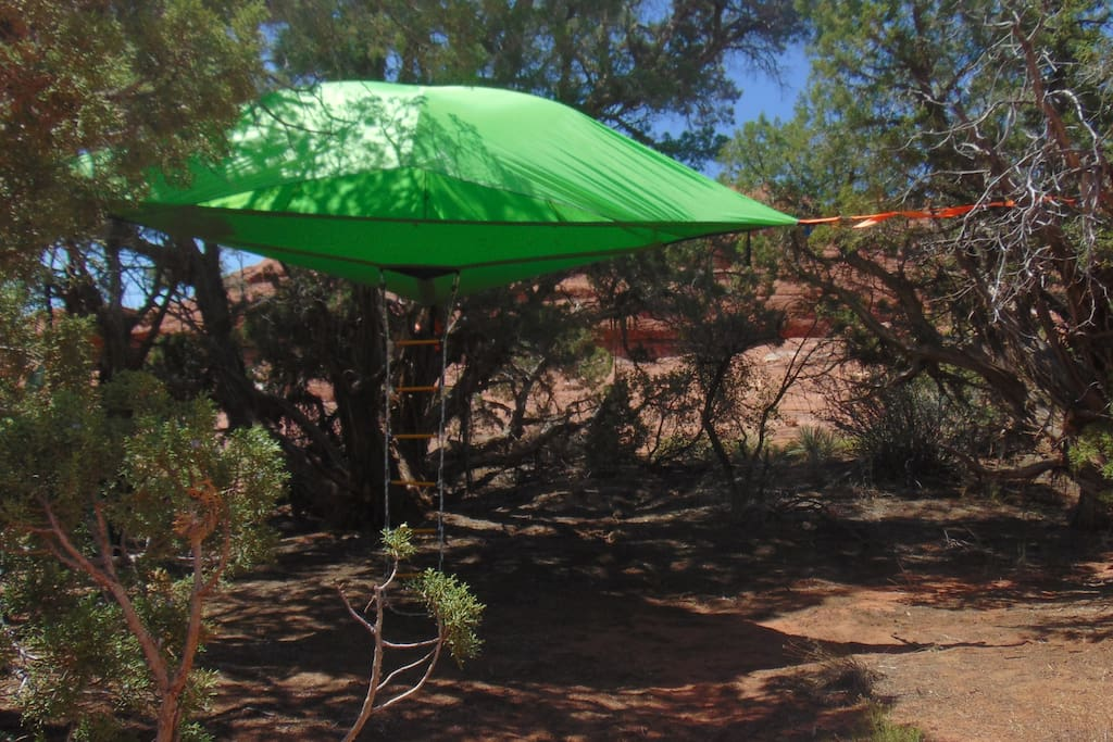 Space craft? hammock? tent? Treehouse hammock tent that looks like a space craft!!