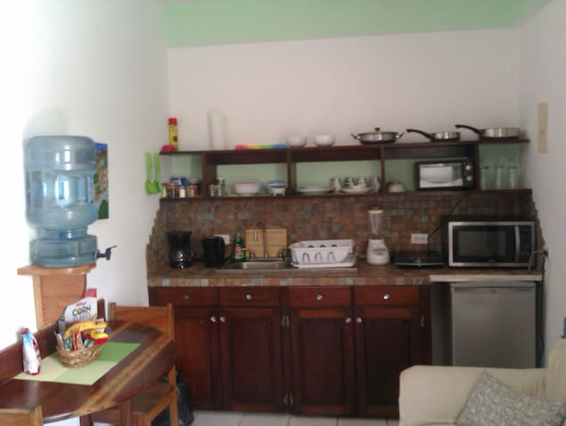 Fully equipped kithen with fridge, microwave, induction cooker, toaster, blender, coffee maker and more