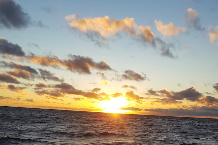 SUNSET SAIL/DINNER/STAY on YACHT- up to 6 guests!