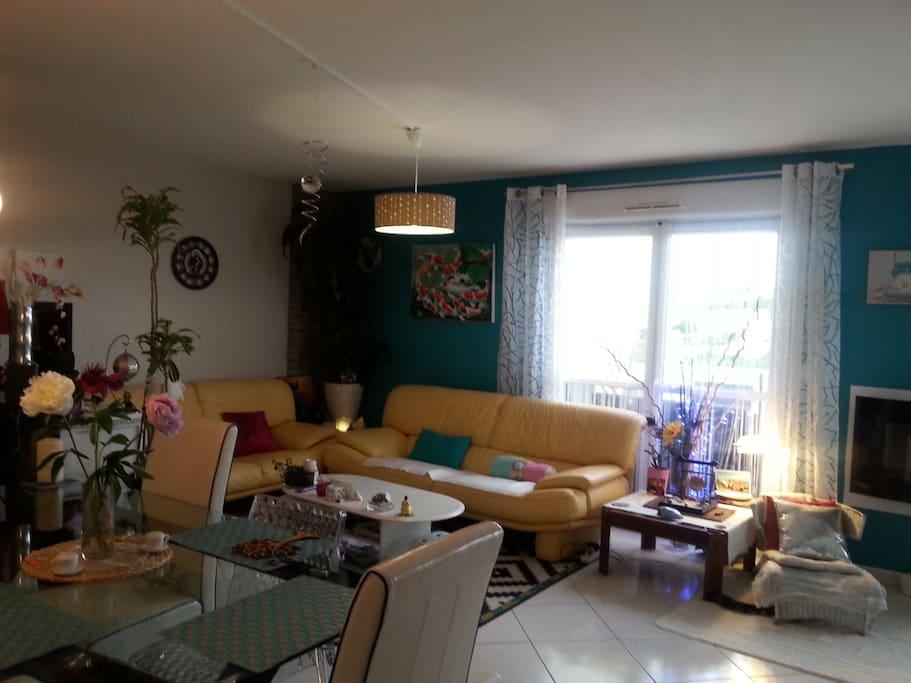 salon et salle a manger spacieux et tres lumineux.Fort agreable pour son confort et bien être.