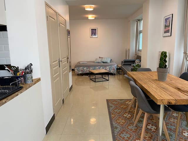 Large and unique souplex 60sqm, well located