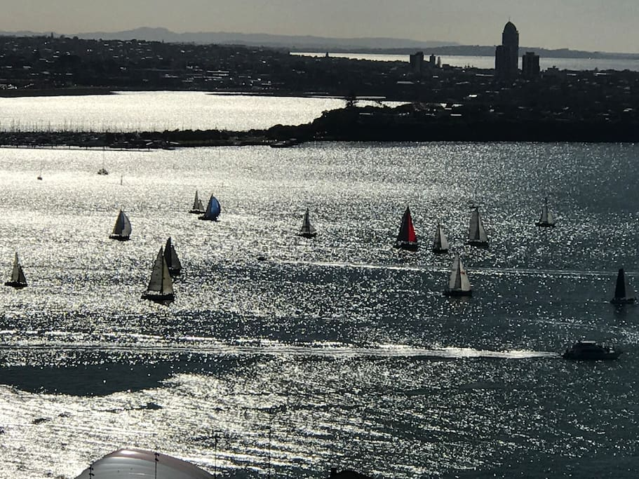 Sailing on the Harbour.  View from Lounge and Bedroom 1.