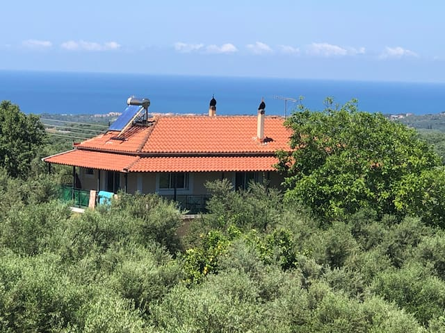 Olive Grove House