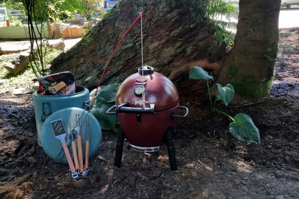 Barbecue/smoker to enjoy. Briquettes too!