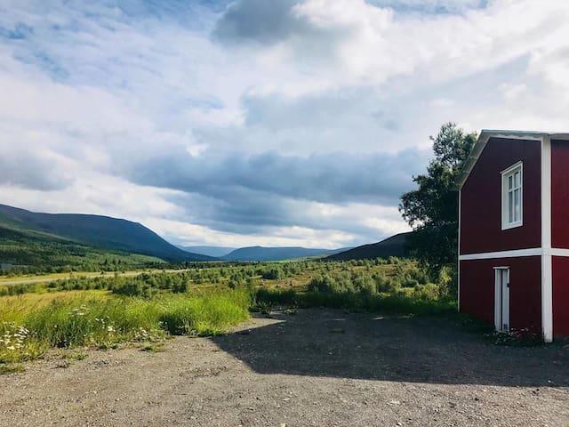 Skógar í Fnjóskadal