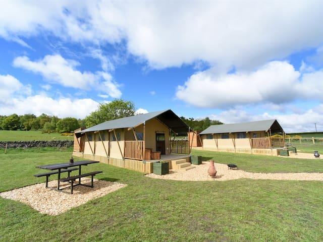 Luxury Safari Tent - Carr's Hill