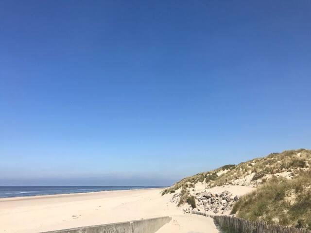 Location d une maison à Stella plage
