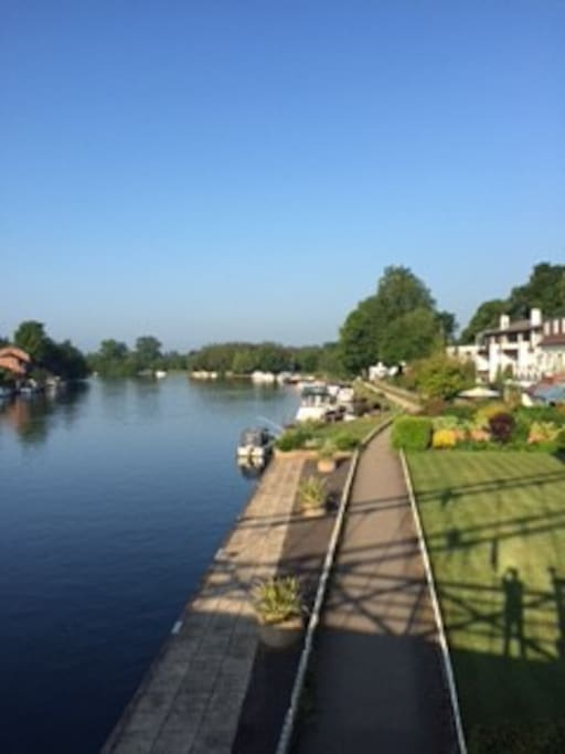 View of the Thames -  beautiful Marlow ( only 5 minutes walk from the flat )