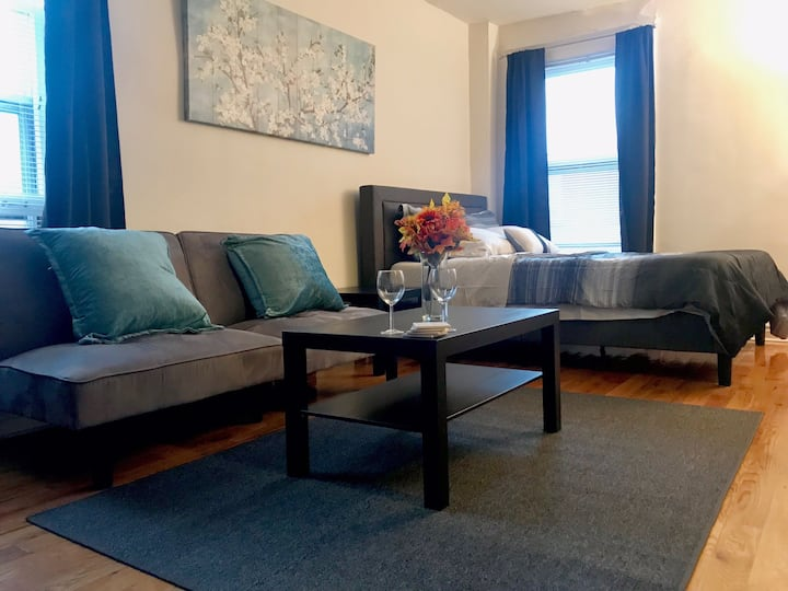Amazing studio in DT Evanston with trans. nearby!