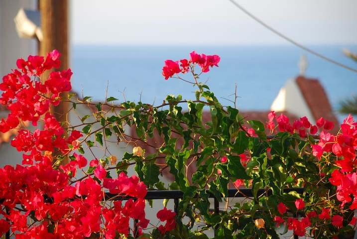 Apart.APHRODITI @Villa Aposperitis - Panormos, Rethymnon - Квартира
