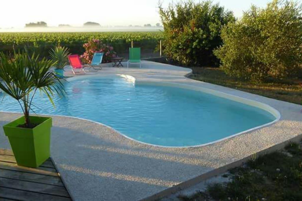 Vue depuis la maison sur la piscine et les vignes du château d'Agassac