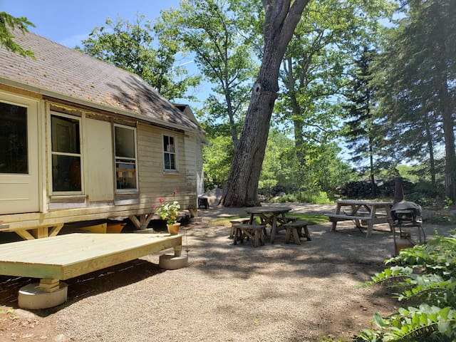 Sunny Woodsy Cottage