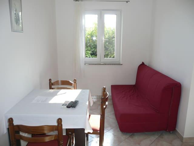 Classic one bedroom apartment in Barbat - Barbat - Departamento