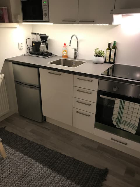Beautiful studio in the most wanted area in Lahti