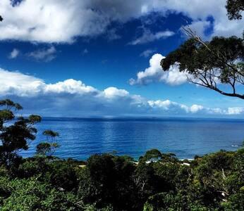 "Wombarra Springs Estate ""rainforest meets the sea"" - Wombarra"