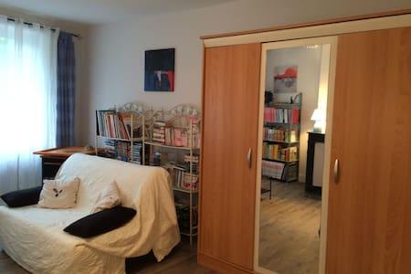 Grande chambre bleue de 20m2 avec espace salon - Chasselay