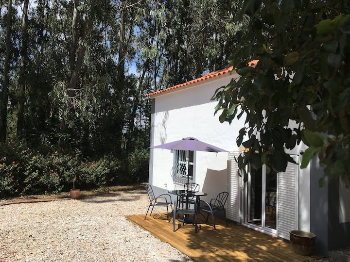 Casa Sobreiro a rural guesthouse with shared pool.