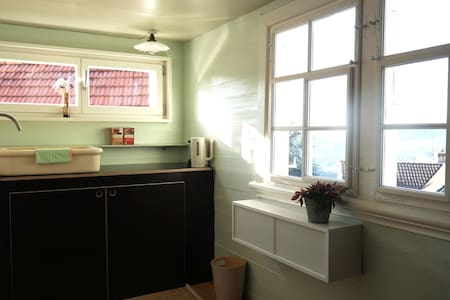 Wunderschönes Studio im Dorfkern von Trogen - Trogen - Apartmen