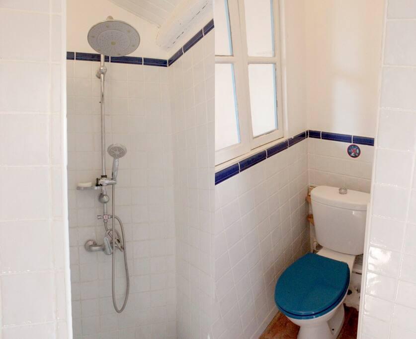 Salle d eau avec wc sanibroyeur.