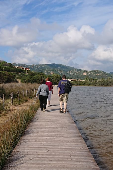 Walking over the lagoon