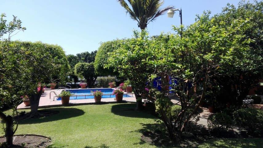 Casa condomini con alberca y jardín - Cuernavaca - Talo