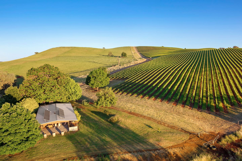 mt-bellevue-lodge-and-vineyard