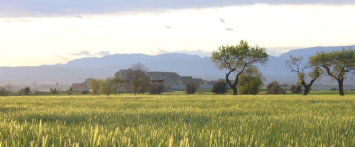 Mittelalterliche Burg im Stile einer Casa Rural