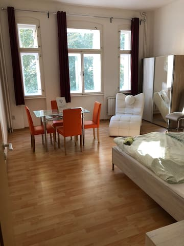 Apartment in the centre of Děčín 3