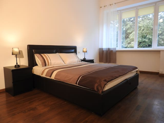 Laisvės alėja comfortable apartament in city