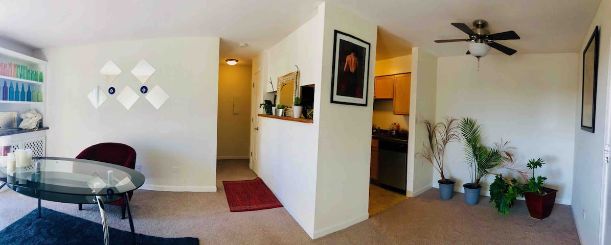 Entire 1 bed room apartment mount Prospect/ O HARE