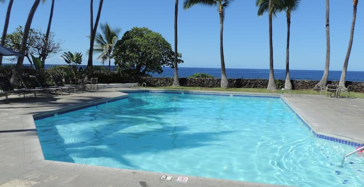 Gorgeous condo for two on ocean front property.