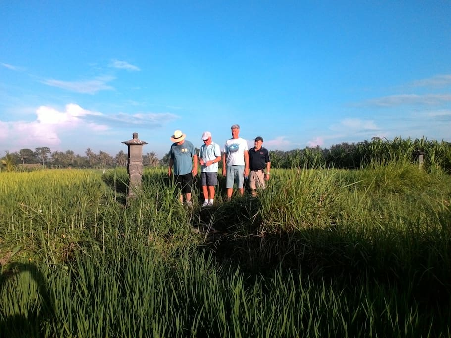 rice fields trekking done by the elders way group near Pondok