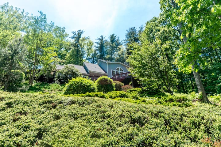 Private Treetop Asheville Home with Mtn. Views