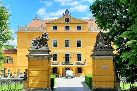 Glorioso castello di Sankt Pölten con sauna