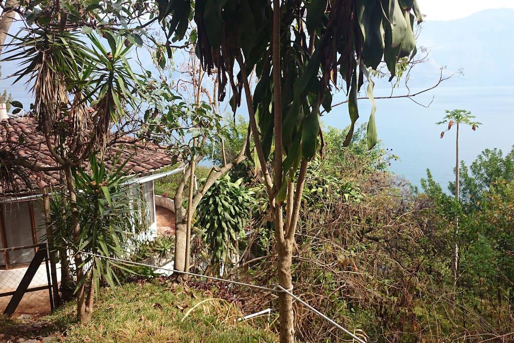 First floor and lake  Blick von oben auf das erste Stockwerk und den See