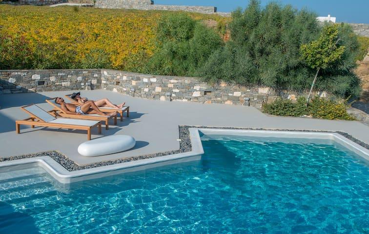 Aelia Grand Villa with Private Pool - Paros - Villa