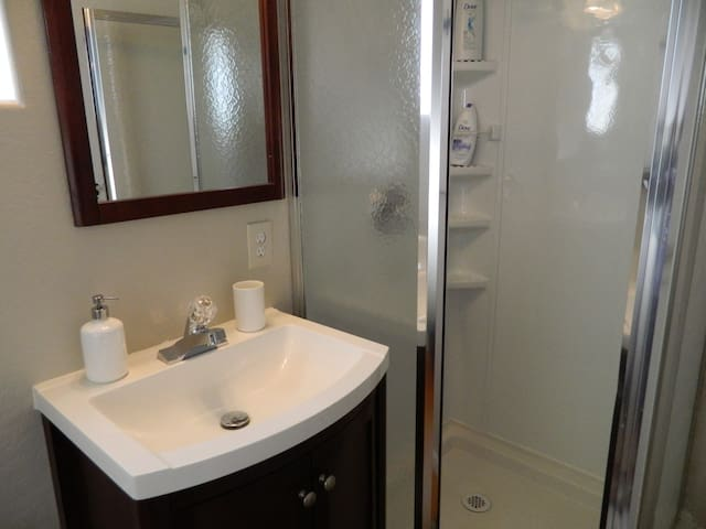 Private bathroom with hand soaps, shampoo, conditioner, and body wash.