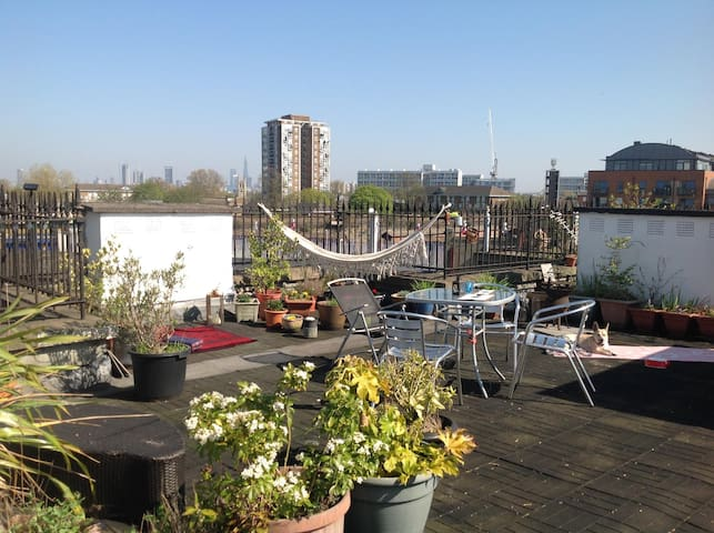 Spacious bright flat with a private roof garden