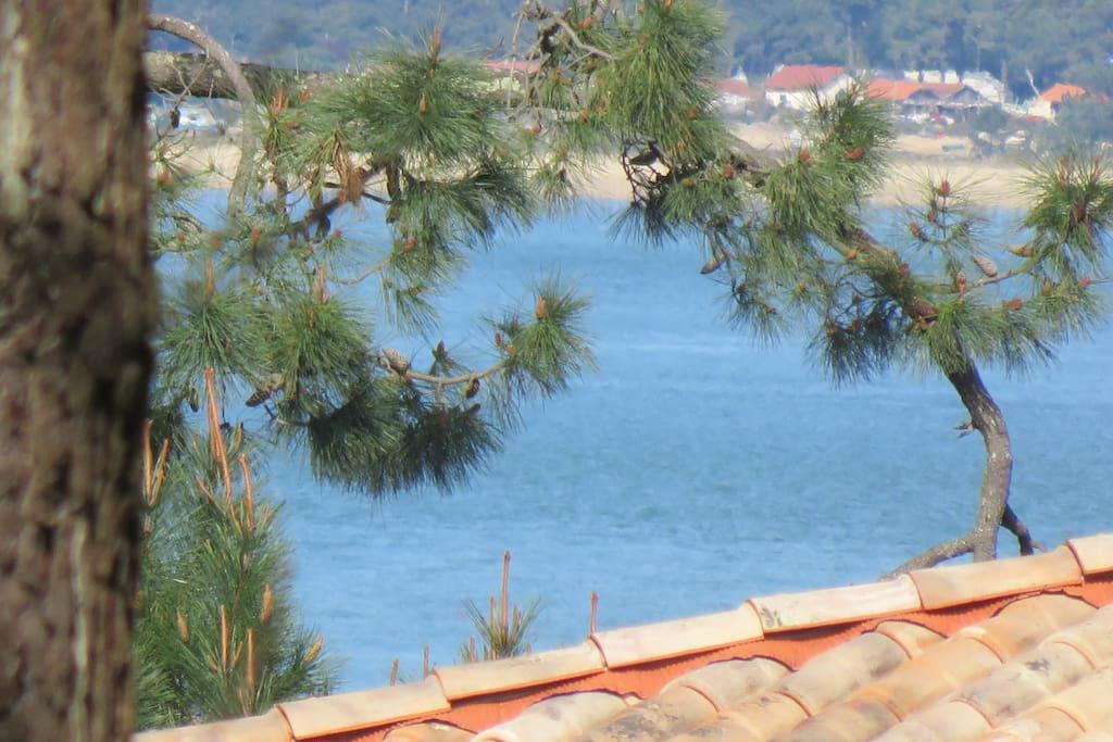 vue sur le bassin depuis le balcon