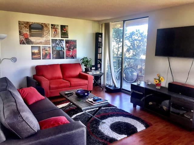 Unique Canadian & Latin style apartment
