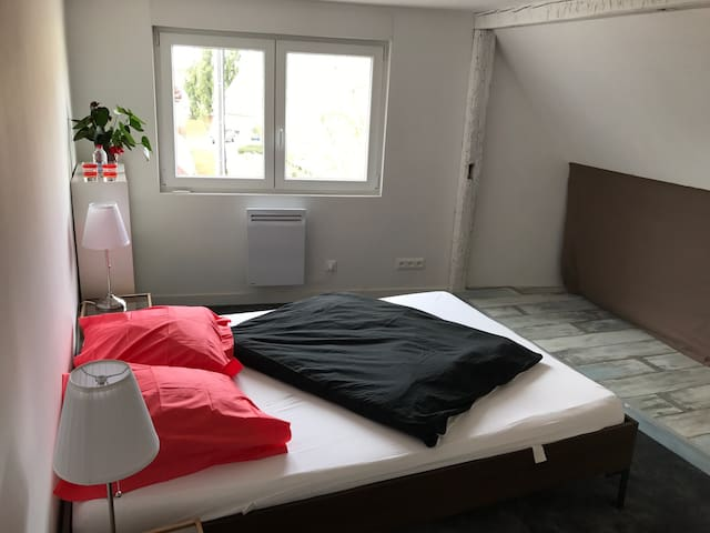 Nice cauzy room with private bathroom and toilet - Fegersheim - Casa