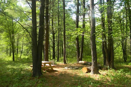 Foxtail Farm Stay: Woods Tent Site - Greenville - Namiot