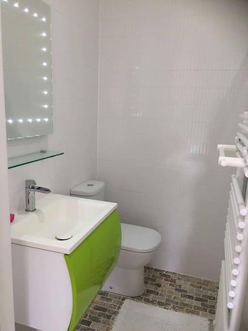 Ensuite bathroom/Shower