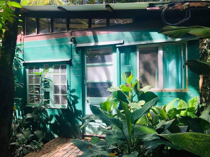 Cassowary House Rainforest Lodge