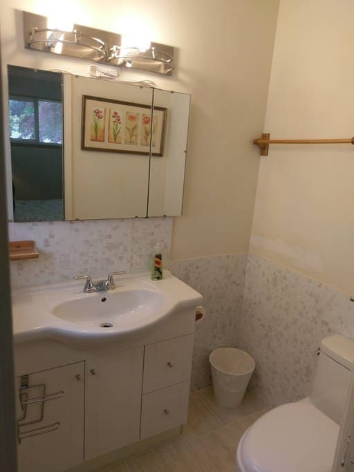 """Private Toilet / Sink for """"A"""" Room."""